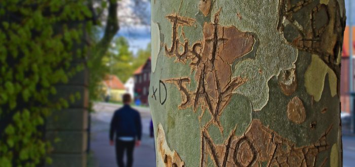 """Tree that says """"just say no"""""""